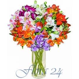 Доставка цветов в г.черновцы купить подарок на день рождения мужчине сумку